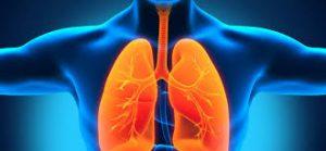 Система внешнего дыхания